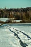 Ландшафт зимы в России (зона Kaluga) стоковое фото rf