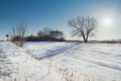 Ландшафт зимы в солнечном дне Стоковое Изображение RF