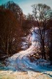 Ландшафт зимы в центральном России стоковые изображения