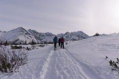 Ландшафт зимы горы панорамы Стоковое фото RF