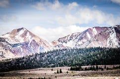 Ландшафт зимы - горы Сьерры Madre Стоковое Изображение RF