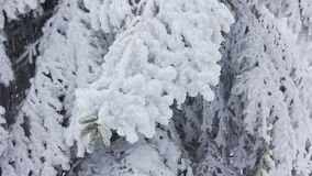 Ландшафт зимы горы акции видеоматериалы