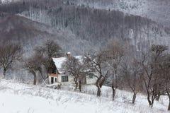 Ландшафт зимы деревни Стоковые Изображения RF