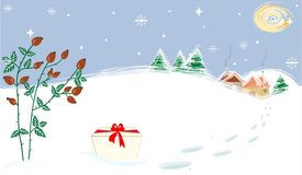 Ландшафт зимы играет главные роли настоящий момент Briar луны Стоковое фото RF