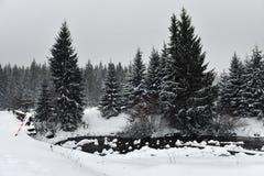 Ландшафт зимы малого снежного реки стоковое фото