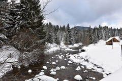 Ландшафт зимы малого снежного реки стоковые изображения rf