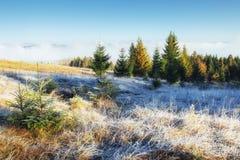 Ландшафт зимы накаляя солнечным светом драматическое место Сценарный туман Стоковые Изображения