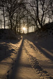 Ландшафт зимы на вечере Стоковое Изображение