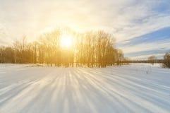 Ландшафт зимы на заходе солнца: яркий свет выходить ветви дерева Стоковые Изображения