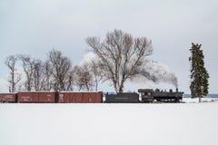 Ландшафт зимы локомотива пара Стоковые Фото