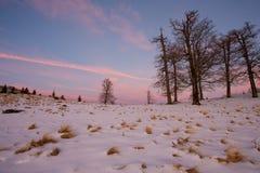 Ландшафт зимы после захода солнца Стоковые Фото
