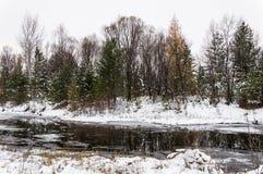 Ландшафт зимы сибирский Река не замерзает в зиме Стоковое фото RF