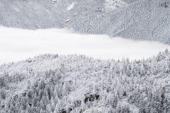 Ландшафт зимы снега скалистых гор Колорадо, который замерли Стоковое фото RF