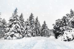 Ландшафт зимы снежный в Монреале Стоковая Фотография RF