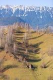Ландшафт зимы с горами в Трансильвании Стоковое Изображение RF