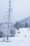 Ландшафт зимы с деревянным домом в горах Стоковое Изображение