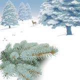 Ландшафт зимы с елевыми ветвями, деревьями и оленями Стоковая Фотография RF