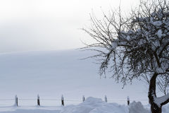 Ландшафт зимы с загородкой Стоковая Фотография