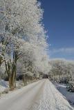 Ландшафт зимы с изморозью Стоковые Изображения RF