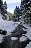 Ландшафт зимы с рекой Стоковые Фотографии RF