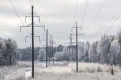 Ландшафт зимы с electro линиями Стоковая Фотография RF