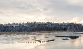 Ландшафт зимы Швеции Стоковое Фото