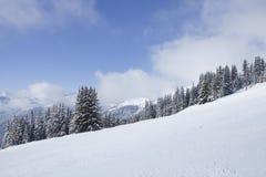 Ландшафт зимы. Стоковые Фото