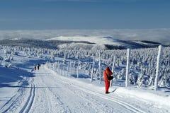 Ландшафт зимы Jeseniky Стоковая Фотография RF