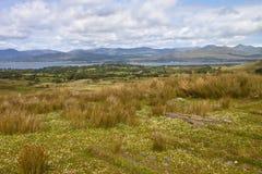 Ландшафт Ирландии Стоковые Изображения
