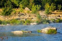 Ландшафт каменистого напротив банка реки, деревьев и реки Стоковое Изображение RF