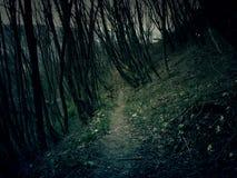 Ландшафт кошмара Стоковая Фотография