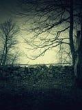 Ландшафт кошмара Стоковое фото RF