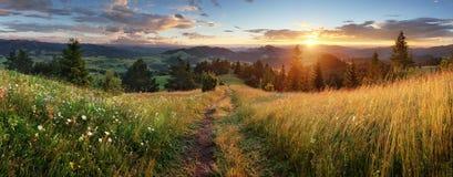 Ландшафт красивого лета панорамный в горах - Pieniny/животиках Стоковые Фотографии RF