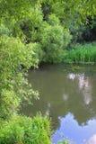 Ландшафт красивого озера Стоковые Фотографии RF