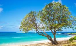 Ландшафт красивого океана Стоковые Изображения