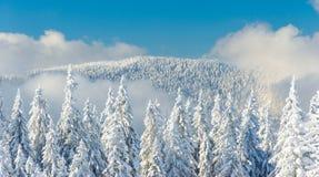 Ландшафт красивой снежной зимы Стоковая Фотография RF