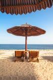 Ландшафт красоты зонтика солнца деревянного стоковые изображения rf