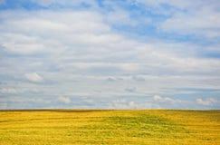 Ландшафт лета Стоковые Фотографии RF