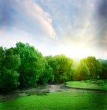 Ландшафт лета Стоковое Изображение RF