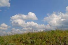 Ландшафт ЛЕТА Стоковое фото RF