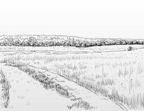 Ландшафт ЛЕТА Стоковое Фото