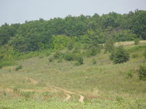 Ландшафт ЛЕТА Стоковые Фото