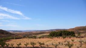 Ландшафт между El Burgo de Osma и Сарагосой Стоковые Изображения