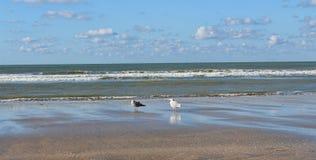 Ландшафт моря в сентябре Стоковая Фотография
