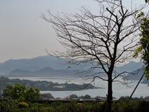 Ландшафт моря стоковое фото