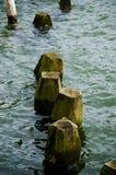 Ландшафт 13 моря Стоковое фото RF