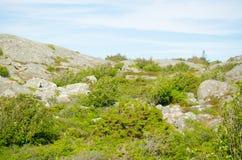 Ландшафт 15 моря Стоковое Изображение RF
