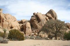 Ландшафт национального парка дерева Иешуа Стоковое Изображение