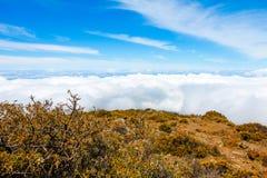 Ландшафт национального парка Haleakala, Мауи, Гаваи Стоковая Фотография