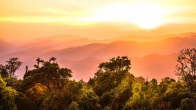 Ландшафт национального парка, phusawan chongyen Стоковая Фотография RF